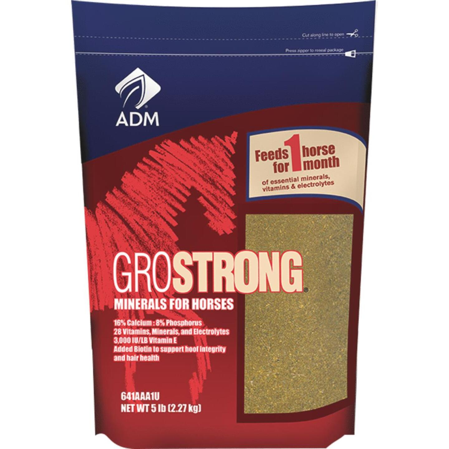 ADM GroStrong 5 Lb. Mineral Horse Feed Supplement Image 1