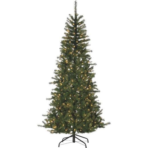 Gerson 7 Ft. Noble Fir 500-Bulb Warm White LED Prelit Artificial Christmas Tree